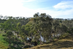 14-Cobbledicks-Reserve-downstream-of-ford-2-Apr-2013