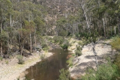 7-Lerderderg-River-Scene-upstream-Mc-Kenzies-Flat-5-Jan-2012